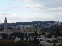 La vue avec la mosquée et Sidi-Bou-Said