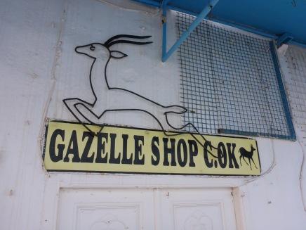La gazelle tunisienne