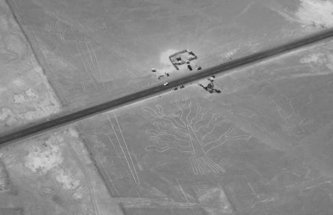 Nazca : Le mirador, l'arbre et les mains (Le lézard coupé par la route)