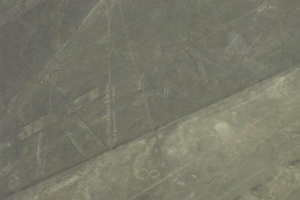 Nazca : ALcatraz