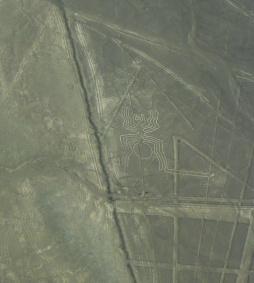 Nazca : L'araignée
