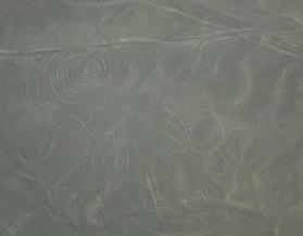 Nazca : Le singe