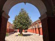 Santa Catalina : placette
