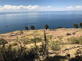 Taquille sur le lac Titicaca