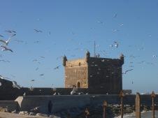 Le fortin du port