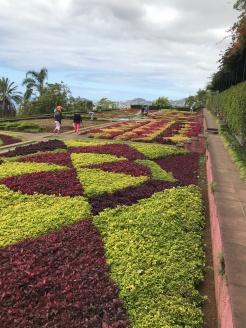 Jardin botanique - Funchal
