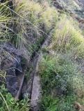 Verdeau dos Zimbreiros