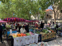Split - Les marchés