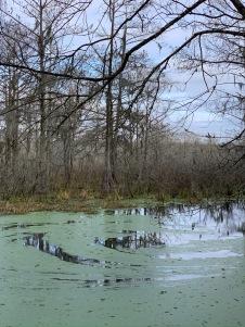 Lac Martin