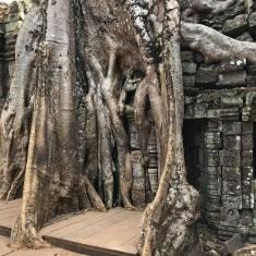 cambodge24